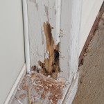Deteriorated door frame.
